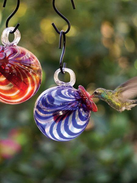 single glass hummingbird feeder single aktivurlaub ab 50